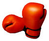 Icon-boxing-gloves.jpg
