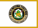 Flag of Multi-National Force – Iraq.png