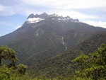 Mountain with a rocky top and forested slopes. There is a narro high waterfall on one side of the mountain slope.