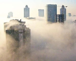 Skyscrapers, both near and far, soar above a dense layer of fog that keeps the ground hidden from view.