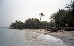 Beach at Al Khawkhah