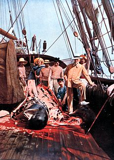A group of men on the deck of a ship surround the remains of a whale, with much blood and blubber in evidence. The figure on the right, the prince, is wearing a tailored jacket and smart hat. The others are in seamen's jerseys.