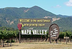 Napa Valley welcome sign.jpg