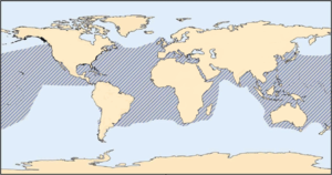 A map of the range of a loggerhead sea turtle covering the Atlantic, Pacific, and Indian Oceans, and the Mediterranean Sea