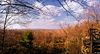 Clear Creek State Forest Lookout.jpg