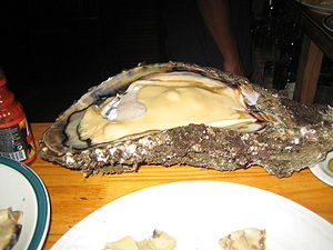 A 2-ft-long open oyster on plate