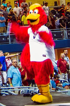 "A person wearing a red anthropomorphized rooster costume dressed in a white baseball jersey with a blue ""V"" on the right chest dances on a baseball dugout"