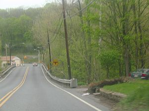 A two-lane road heading towards its end at a traffic light in a wooded area