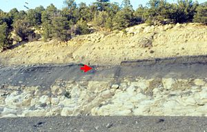 A cliff with pronounced layered structure: yellow, gray, white, gray. A red arrow points between the yellow and gray layers.