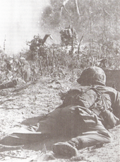 A soldier laying prone on the ground with his back to camera. Through the broken foliage and smoke other soldiers can be seen.