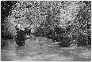 two columns of Marines wade throuugh waist-deep water in a jungle
