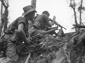 Two soldiers crouching on an incline in jungle terrain. The man on the left is holding a rifle and the man on the right is firing a light machine gun