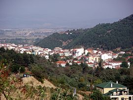 View of the city of Florina.