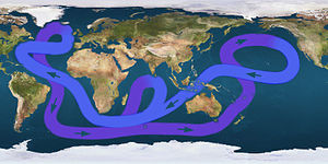Map displaying a looping line with arrows indicating that water flows eastward in the far Southern ocean, angling north east of Australia, turning sough after passing Alaska, then crossing the mid-Pacific to flow north of Australia, continuing west below Africa, then turning northwest until reaching eastern Canada, then angling east to southern Europe, then finally turning south just below Greenland and flowing down the Americas' eastern coast, and resuming its flow eastward to complete the circle