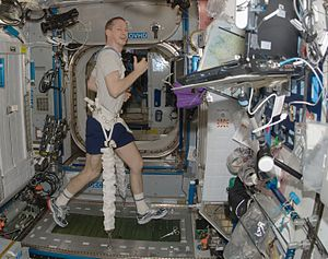 Astronaut Frank De Winne is attached to the TVIS treadmill with bungee cords aboard the International Space Station