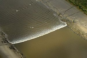 A tidal bore wave moves along the River Ribble between the entrances to the Rivers Douglas and Preston.