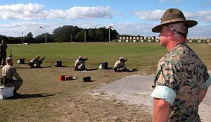 color photo of a rifle range, with recruits firing rifles at distant targets while a Warrant Officer observes