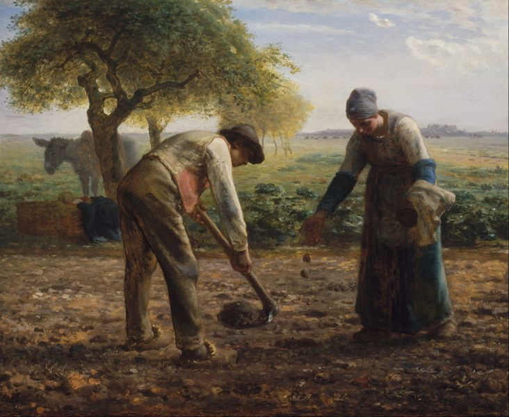 File:Jean-François Millet - Potato Planters - Google Art Project.jpg