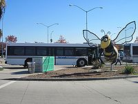 Norwalk Transit Bus and Bee.jpg