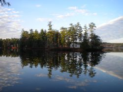 A clear view of tiny Loon Island on a perfectly calm day on Forest Lake