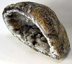 Half of a sliced geode nodule showing the hollow center lined with white and grayish druzy crystals.