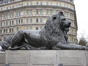 The lions at Nelson's Column