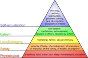Pyramid diagram illustrating Maslow's theory of needs