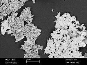 SEM photo showing calcite rafts