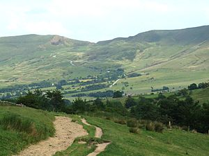 A photograph of moorland in summer; in the foreground is a dirt track on a small hill, in the mid-ground a small wood; in the background a treeless moorland skyline.