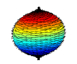 "colored ball with ""hair"" (representing a vector field on a sphere)"
