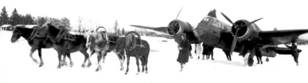 Two horses in front and a bomber in behind.