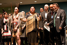 New Zealand endorses Declaration on the Rights of Indigenous People, 2010